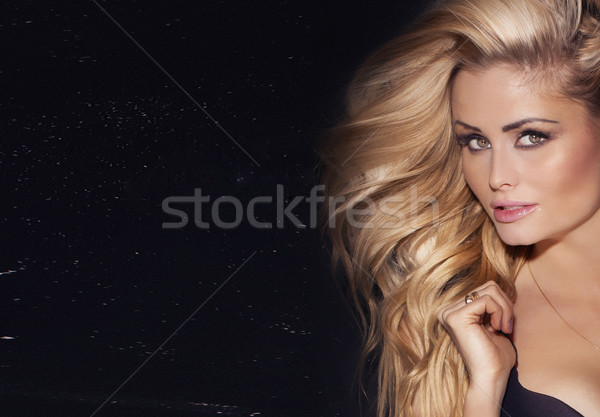 Beauty portrait of delicate woman. Stock photo © PawelSierakowski