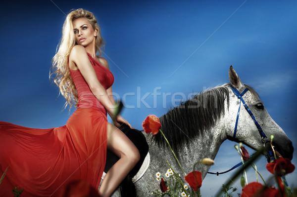 Piękna posiedzenia konia czerwona sukienka modny Zdjęcia stock © PawelSierakowski