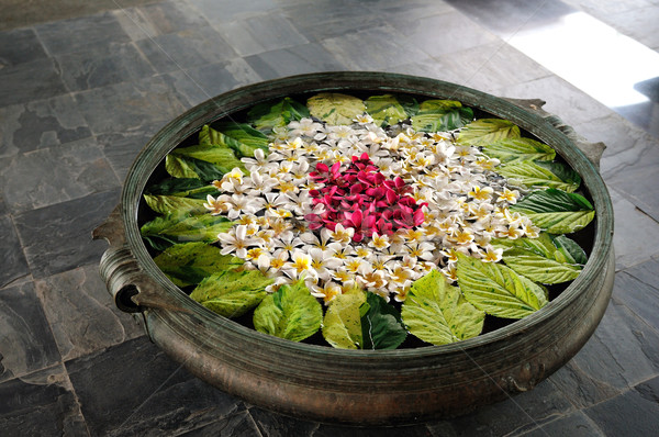 Coloré fleurs bol eau fleur nature Photo stock © pazham