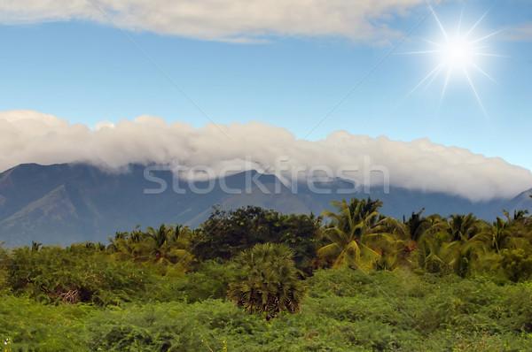 Gyönyörű vidéki táj fényes napos idő ház fa Stock fotó © pazham