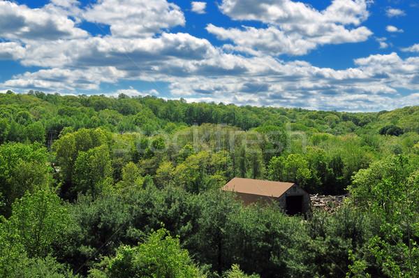 Tájkép gyönyörű felhők növényzet nyár hónapok Stock fotó © pazham