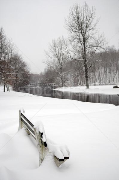 Hóesés helyi park fedett út erdő Stock fotó © pazham