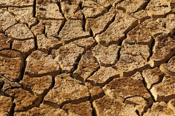 Sécher terres résumé coup nature Photo stock © pazham
