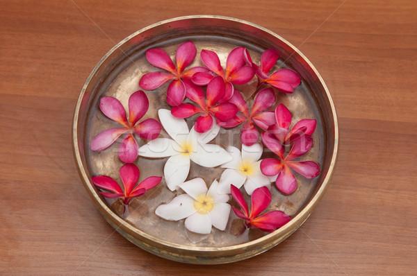 Coloré fleurs fleur eau fond cuisine Photo stock © pazham