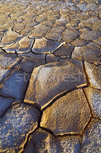 çamur çatlaklar doku arka plan toprak yaz Stok fotoğraf © pedrosala
