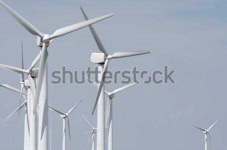windmills Stock photo © pedrosala