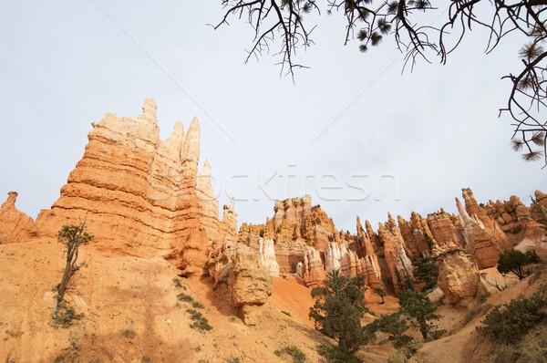 каньон мнение хвоя парка горные оранжевый Сток-фото © pedrosala