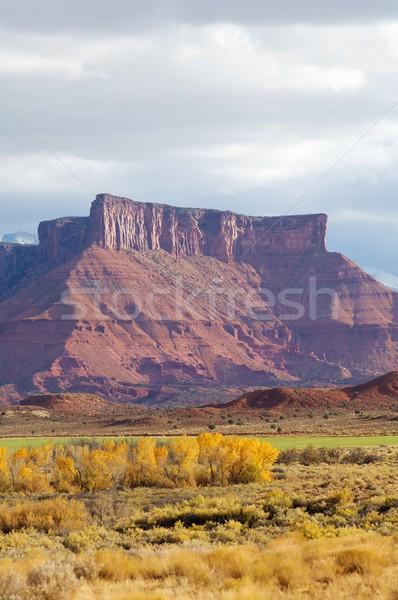 Towers in the desert Stock photo © pedrosala