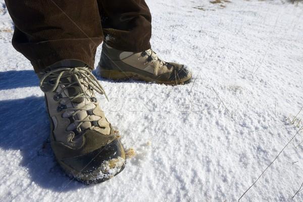 Hiking boots Stock photo © pedrosala