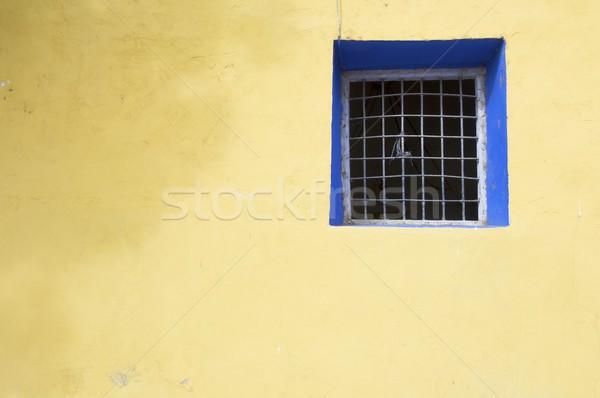blue window Stock photo © pedrosala