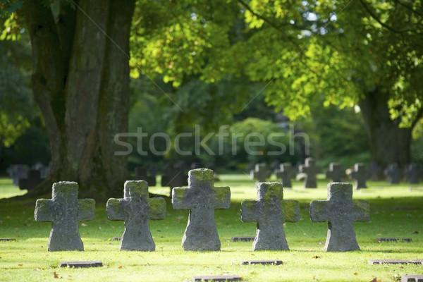 Cementerio militar normandía Francia hierba Foto stock © pedrosala