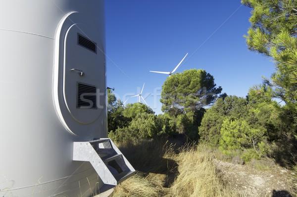 átjáró modern szélmalom fa erdő zöld Stock fotó © pedrosala