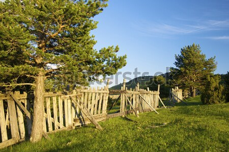 fencing Stock photo © pedrosala