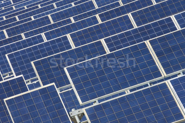 photovoltaic panels Stock photo © pedrosala