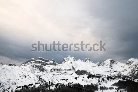 Winter in Pyrenees Stock photo © pedrosala