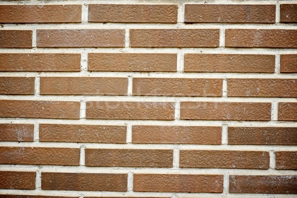 brick wall Stock photo © pedrosala