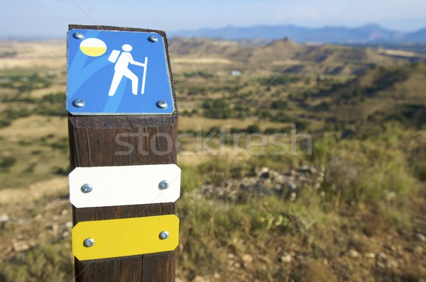 walking signal Stock photo © pedrosala