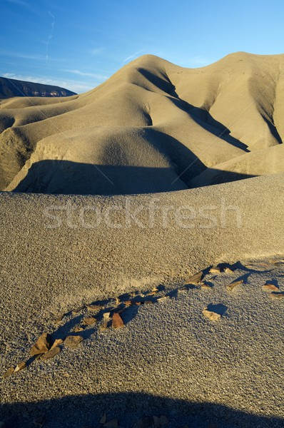 Loam landscape Stock photo © pedrosala