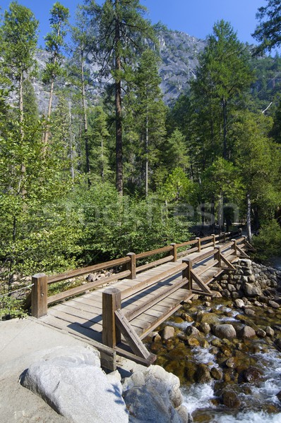 Yosemite hout brug yosemite national park Californië USA Stockfoto © pedrosala