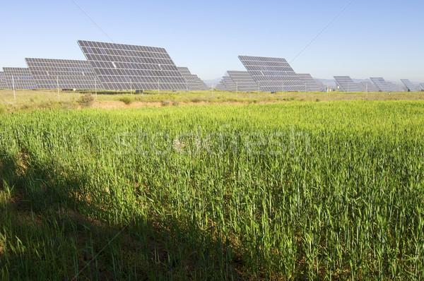 Fotovoltaica solar campo prado blue sky industrial Foto stock © pedrosala