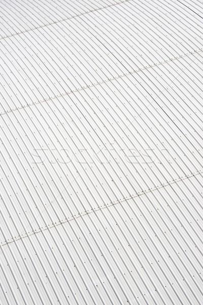 metal roof Stock photo © pedrosala