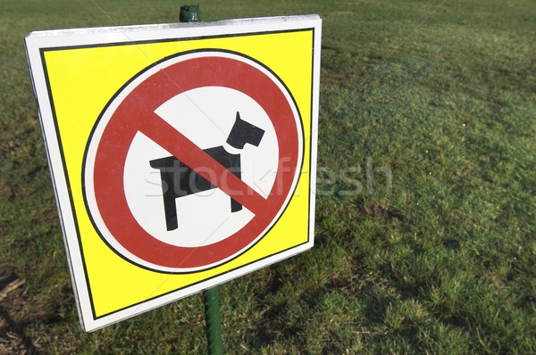 no dogs Stock photo © pedrosala