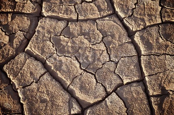 Lama rachaduras textura fundo terra verão Foto stock © pedrosala
