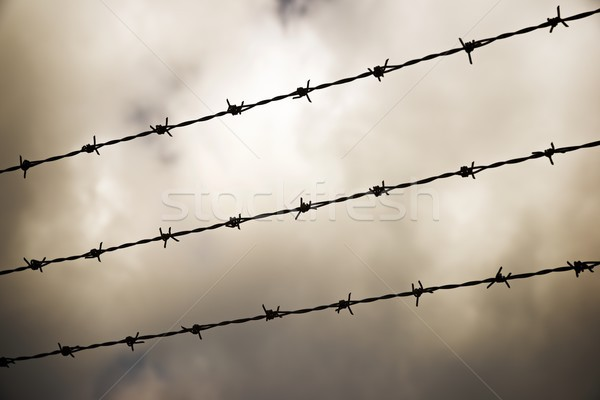 Prikkeldraad hek hemel natuur achtergrond Stockfoto © pedrosala