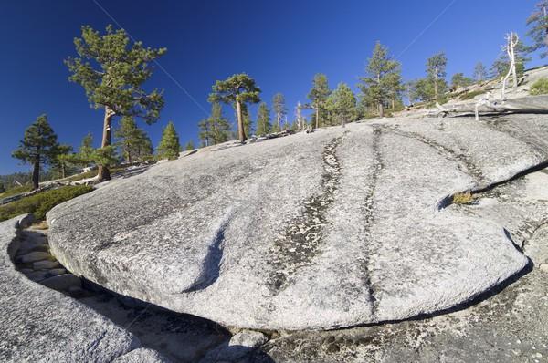Yosemite landschap bomen rock yosemite national park Californië Stockfoto © pedrosala