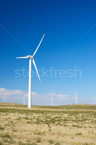 ветер энергии электрических власти производства фермы Сток-фото © pedrosala