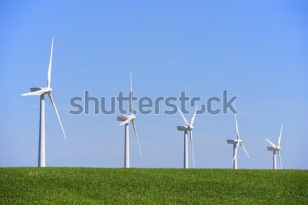 idyllic windmills  Stock photo © pedrosala