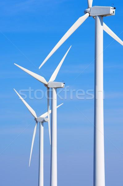 Wind energy Stock photo © pedrosala