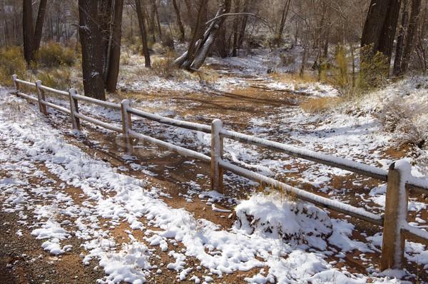 Indiai patak kerítés fa tájkép hó Stock fotó © pedrosala