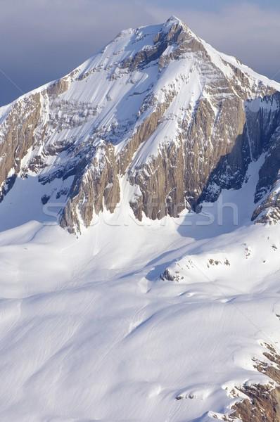 Tendenera peak Stock photo © pedrosala