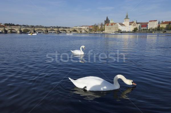 Praga bianco fiume Repubblica Ceca acqua amore Foto d'archivio © pedrosala