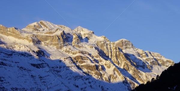 Panoramic winter Stock photo © pedrosala