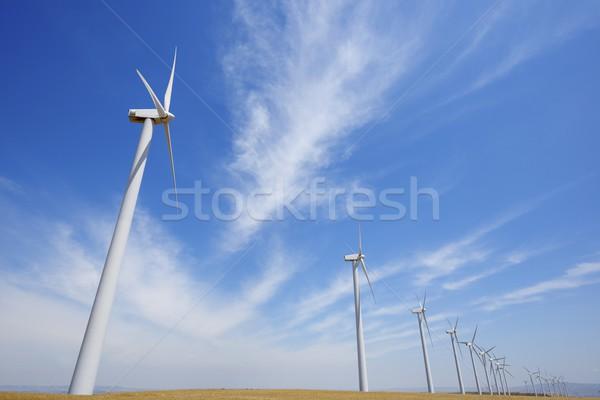 Szél energia csoport megújuló elektromos gyártás Stock fotó © pedrosala
