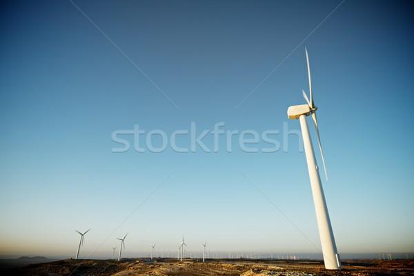 Wind energie elektrische macht productie la Stockfoto © pedrosala