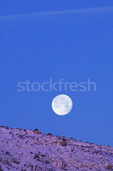 Moon at dawn Stock photo © pedrosala