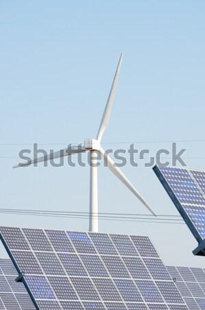 Blue Sky солнце технологий зеленый Сток-фото © pedrosala