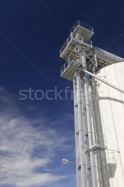 White silo Stock photo © pedrosala