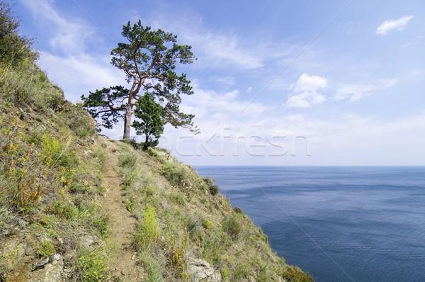 Meer wal stad siberië Rusland hemel Stockfoto © pedrosala