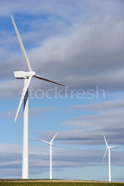 ветер энергии возобновляемый электрических производства технологий Сток-фото © pedrosala