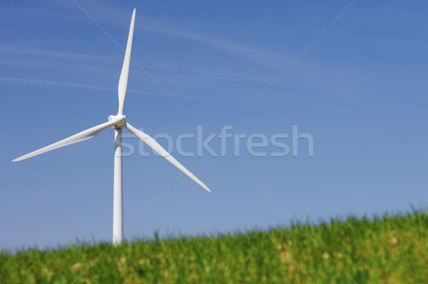 windmill Stock photo © pedrosala