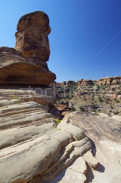 Canyonlands National Park Stock photo © pedrosala