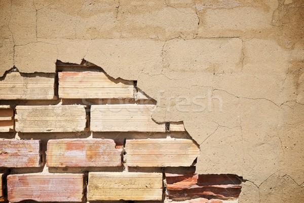 Brick wall Stock photo © pedrosala