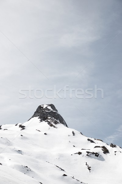 Pyrenees in France Stock photo © pedrosala