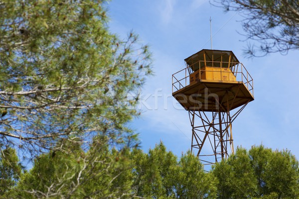 Watch tower Stock photo © pedrosala