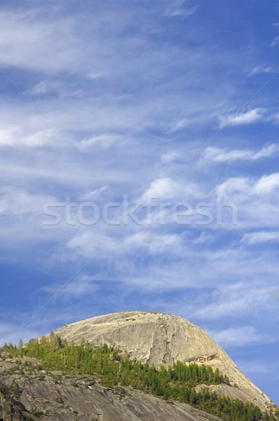 ヨセミテ 崖 ヨセミテ国立公園 米国 空 ツリー ストックフォト © pedrosala