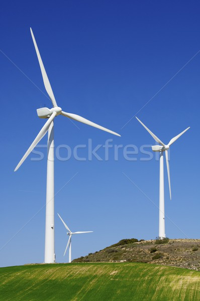 Vent énergie groupe renouvelable électriques production Photo stock © pedrosala